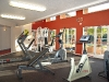 ventana-vista-gym