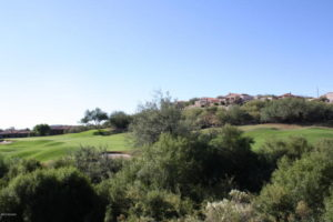 Greens at Ventana Canyon
