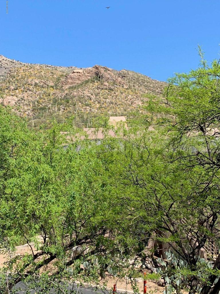 Canyon View At Ventana Rental